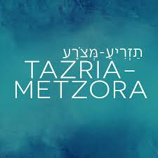 Parashat Tazria-Metzora – by Yaffa Epstein